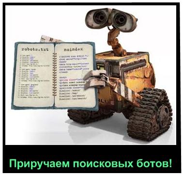 создание robots для wordpress
